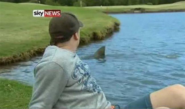 13. Только в Австралии на поле для гольфа можно встретить акулу.