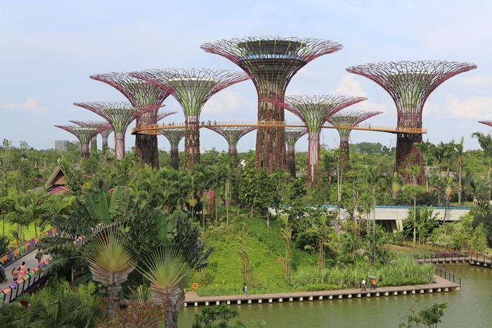 4. Сады у залива - Сингапур.