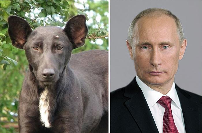 3. Владимир Путин.