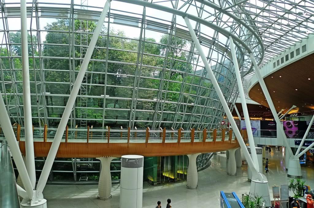 5. Международный аэропорт Куала-Лумпур. Тут вы с трудом осознаете, что находитесь в аэропорту. Ведь это – настоящий тропический лес  по которому можно свободно гулять.
