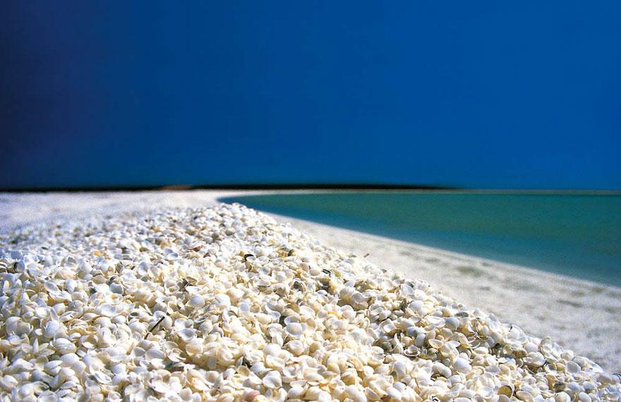 13. Ракушечный пляж в Акульем заливе, Австралия.