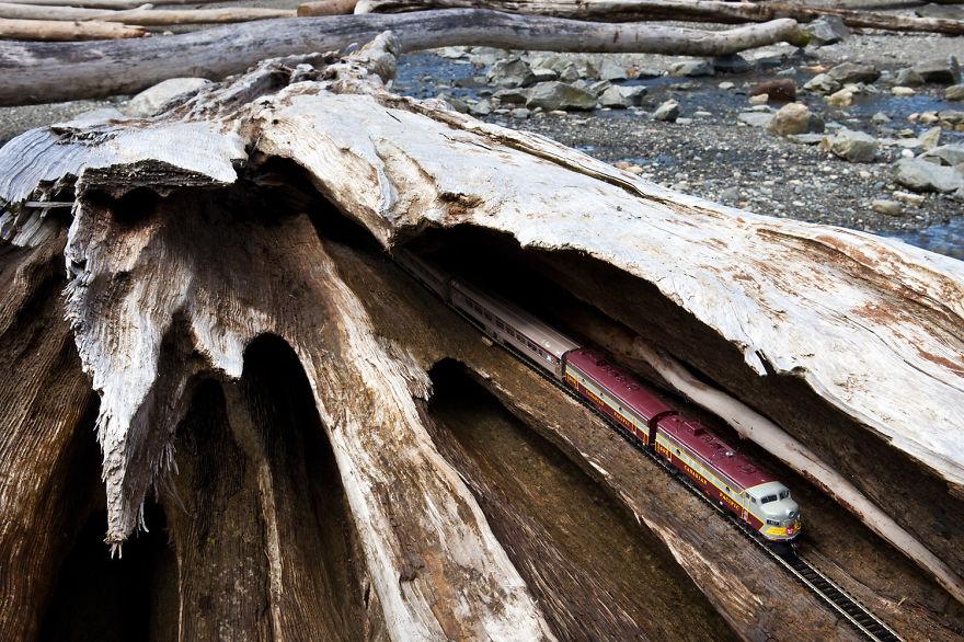 12. Сплавной лес, Британская Колумбия.