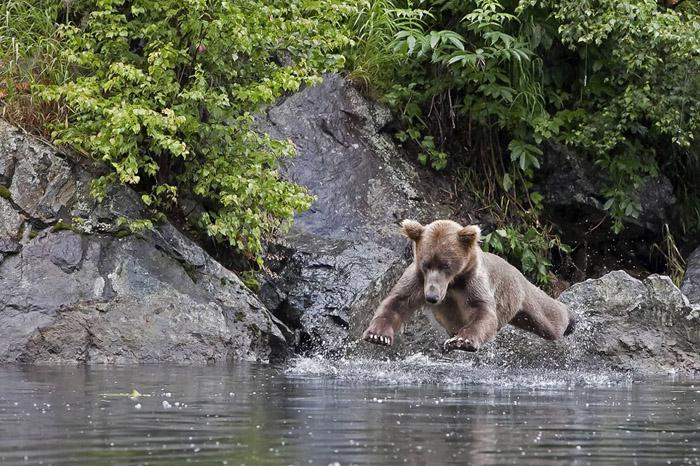 36. Очередной любитель ходить по воде.