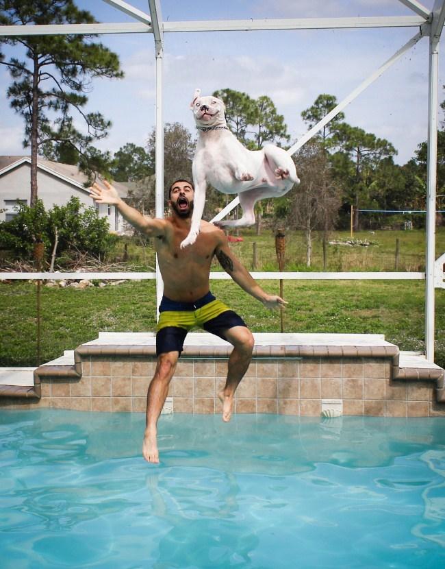 26. Сегодня разрешаю прыгать в бассейне!