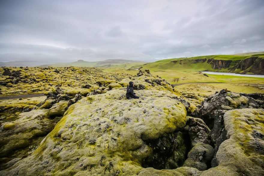 8. «Видели невероятные исландские зеленые поля».