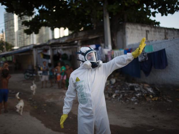 4. Сейчас в Бразилии все усилия направлены на уничтожение комаров, которые являются переносчиками вируса.