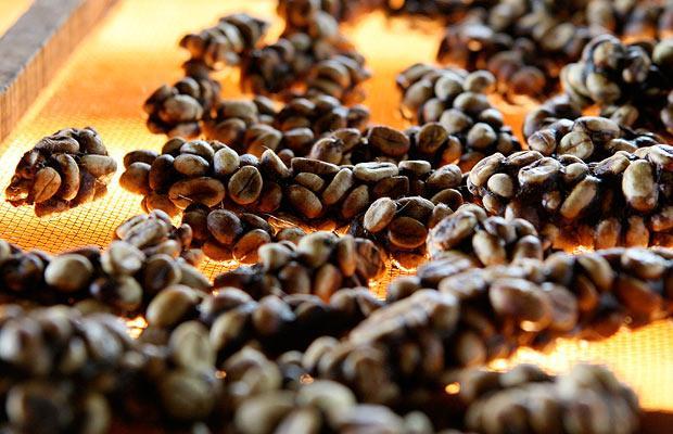 8. Кофе из фекалий циветты. Очень дорогой и говорят, очень вкусный.