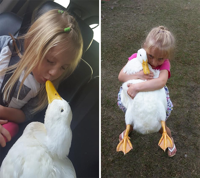 8. «Вместе с уткой выросла и Кайли. Она стала очень ответственной», - говорит ее мама.