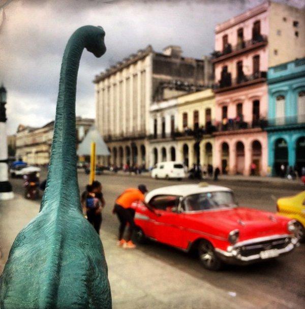 6. Динозавры ворвались в город.