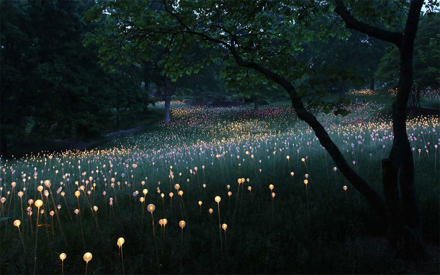 4. Ботанические сады и музей искусств Cheekwood Нэшвилл, штат Теннесси, США.