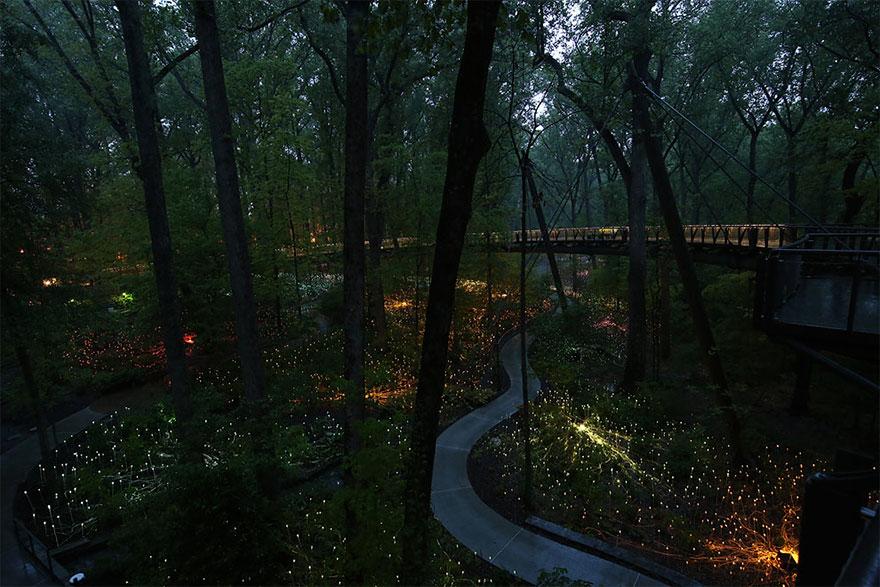 6. Ботанический сад Атланты, штат Джорджия, США.