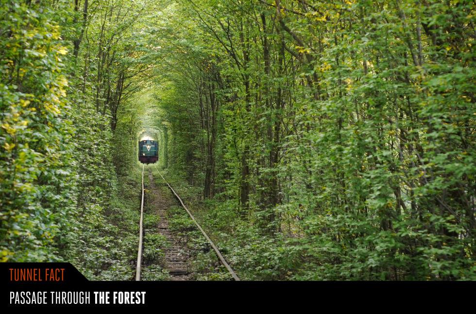 4. Тоннель любви, Украина.