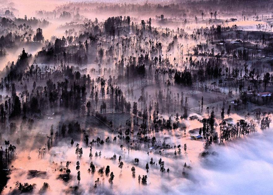 14. «Туман в деревне Чеморо Лаванг», Индонезия.