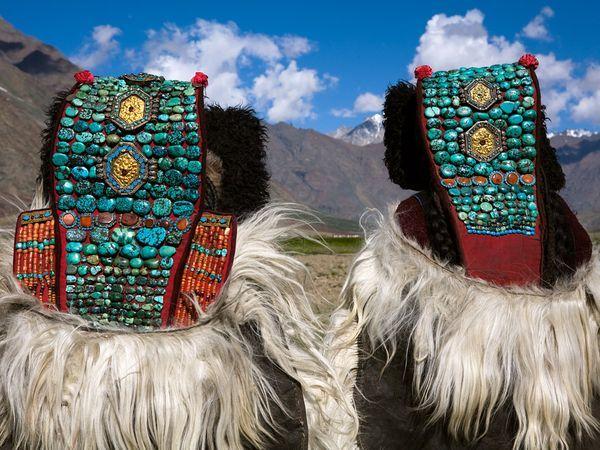 9. Грубые бирюзовые камни украшают головные уборы эти двух индийских женщин в Ладакх, отдаленного района Гималаев. (ФОТО: STEVE WINTER).