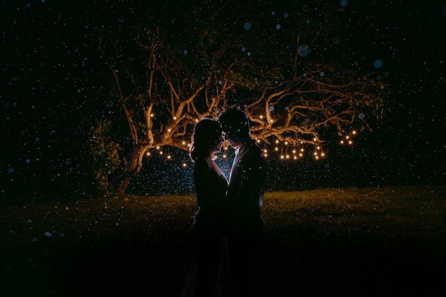 2. Ночь волшебных светлячков.
