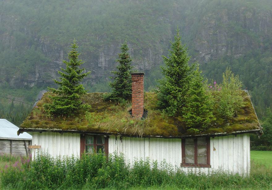 12. Норвегия.