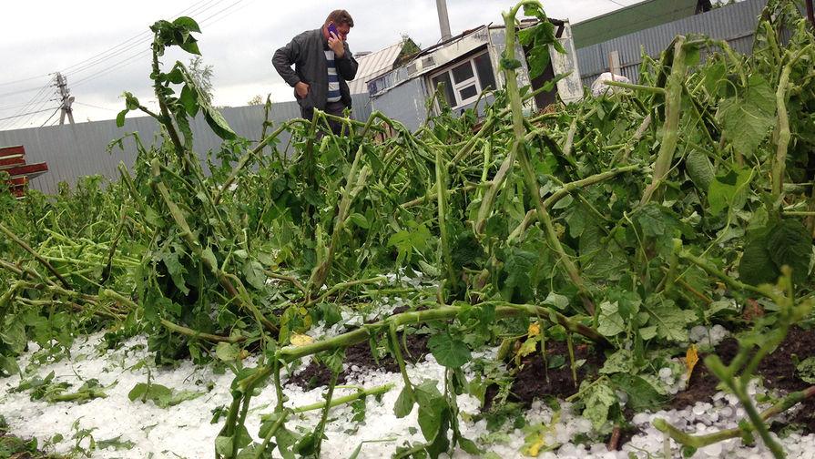 3. В некоторые районы пришли заморозки, которые изрядно попортили урожай фермеров. Те, кто уже спрятал теплые вещи, вынуждены были достать их обратно.