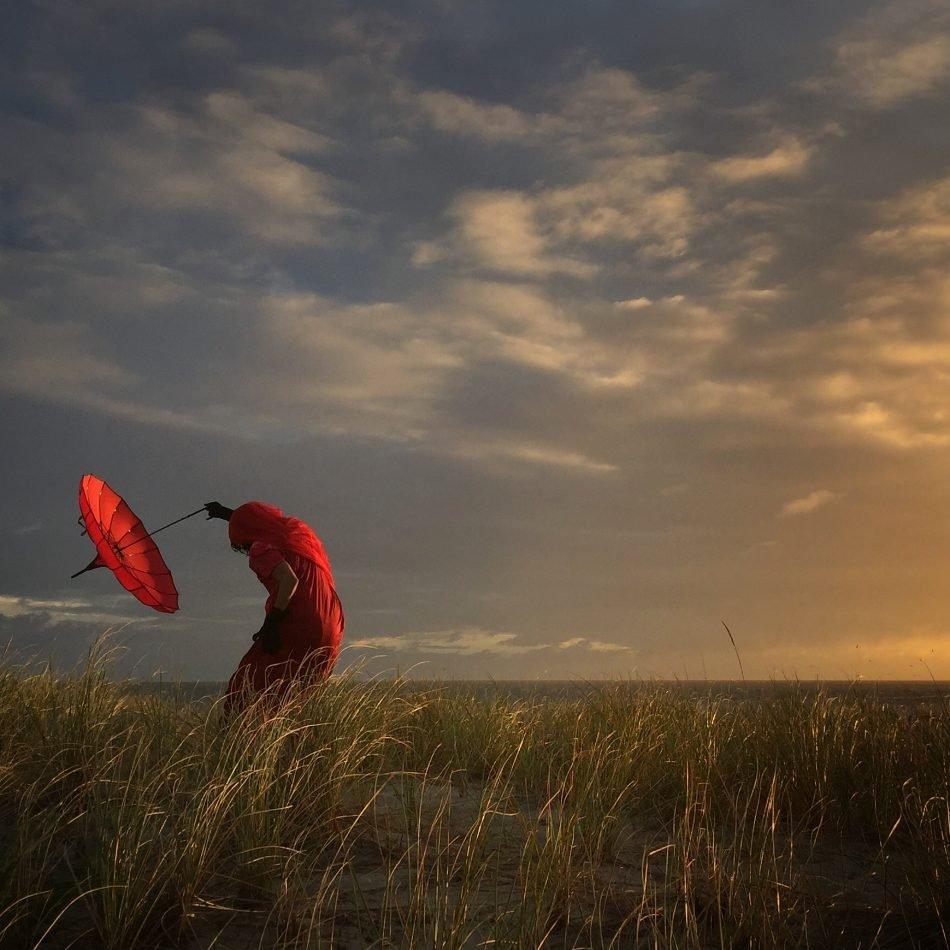 3. Второе место – Робин Роберти из Калифорнии за работу «Наклоняясь на ветру».