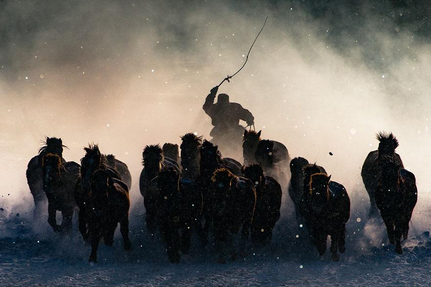 1. Гран-при конкурса: «Зимний всадник», Внутренняя Монголия. Также первое место в номинации «Люди».