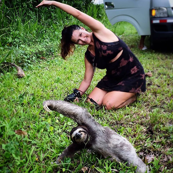12. Девушка турист остановилась, чтобы позаниматься йогой вместе с ленивцем.