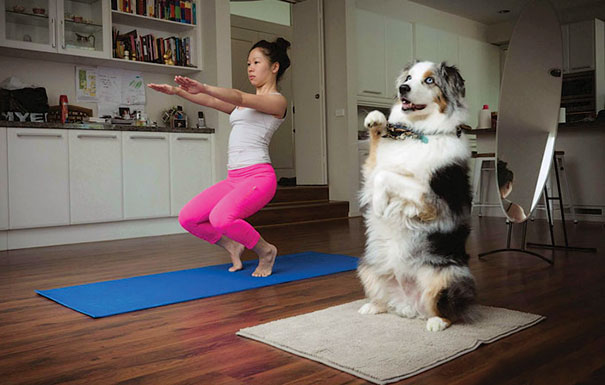 7. Хорошо заниматься вместе со своей собакой.