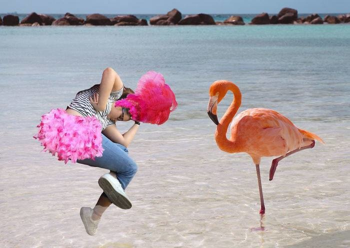 6. Розовый фламинго.