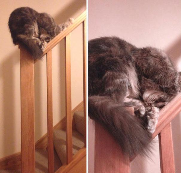 2. Наверняка это самое удобное место в доме.