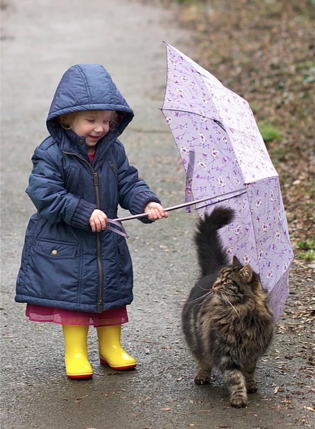 10. С котом ребенку хорошо в любую погоду.