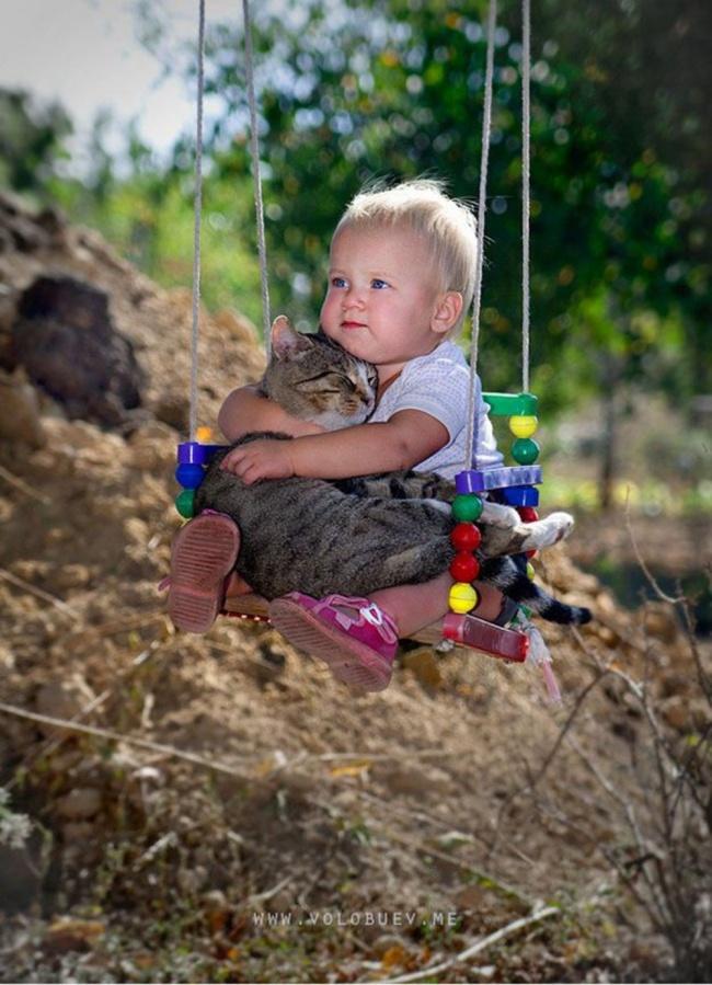 5. С котом даже можно гулять на свежем воздухе.