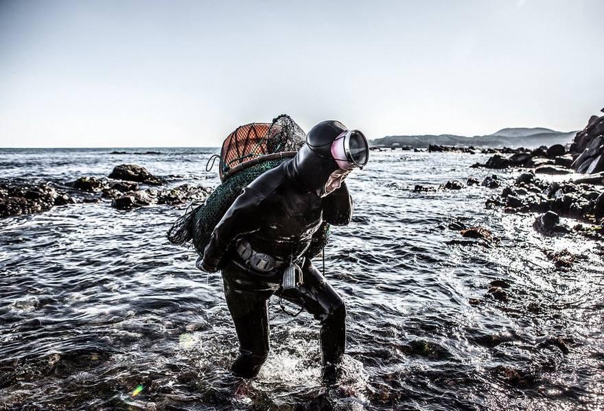 2. Они погружаются на глубину 20 метров, к самому дну, собирая моллюсков, морских ежей и кальмаров.
