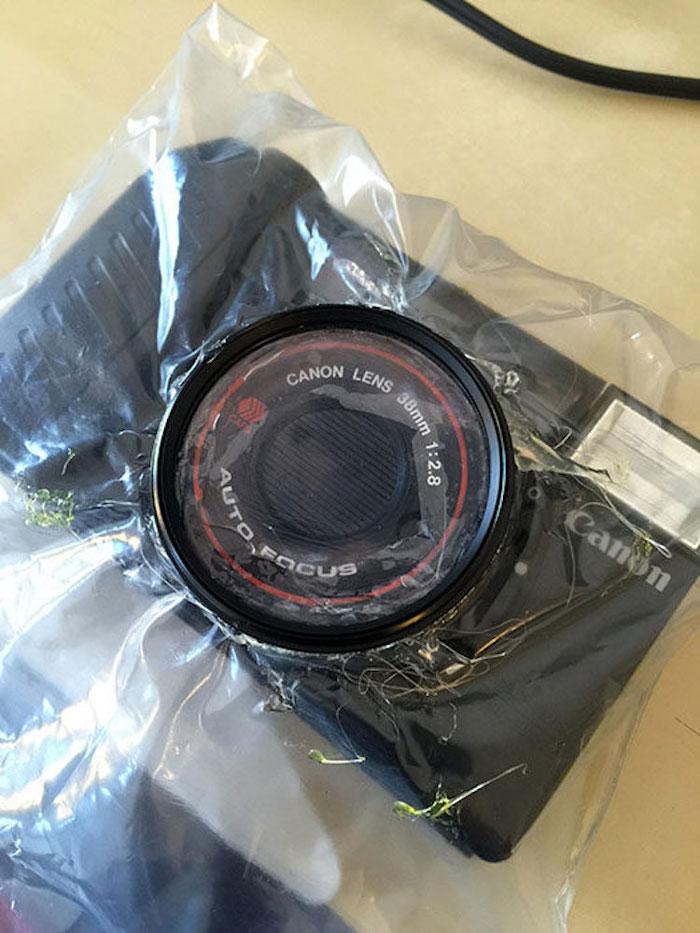 2. Фотограф купил дешевый пленочный фотоаппарат Canon Sure за $1 и фотопленку Fujifilm SUPERIA 400, отложил в сторону свою дорогую камеру и в течении месяца снимал только этим дешевым фотоаппаратом.