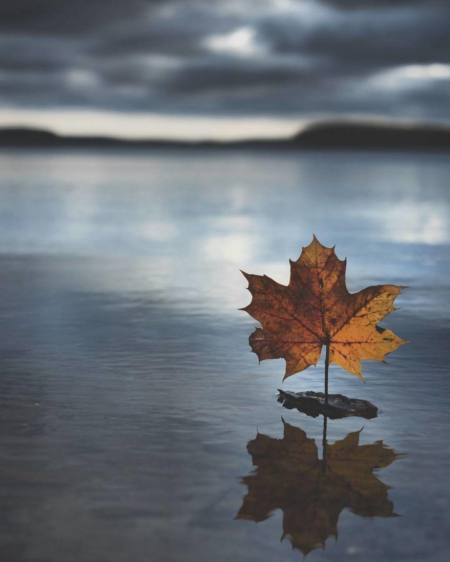 17. Кораблик из листьев.