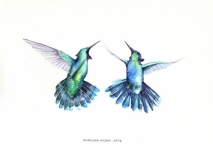 7. Зеленый колибри.