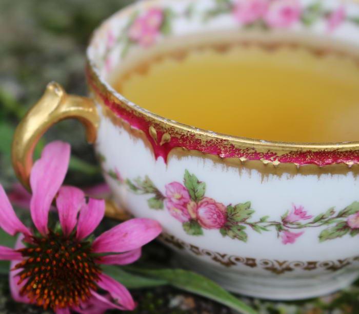 4. Чай из эхинацеи.