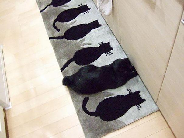 6. Коврик с котами.