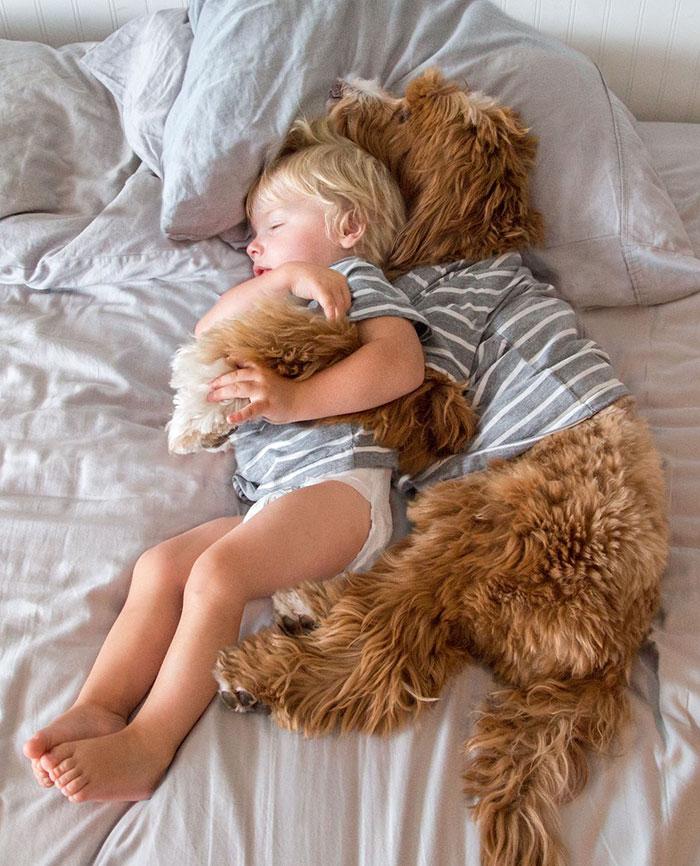 1. Малыш Бадди и его четвероногий друг Рейган очень популярны в сети.