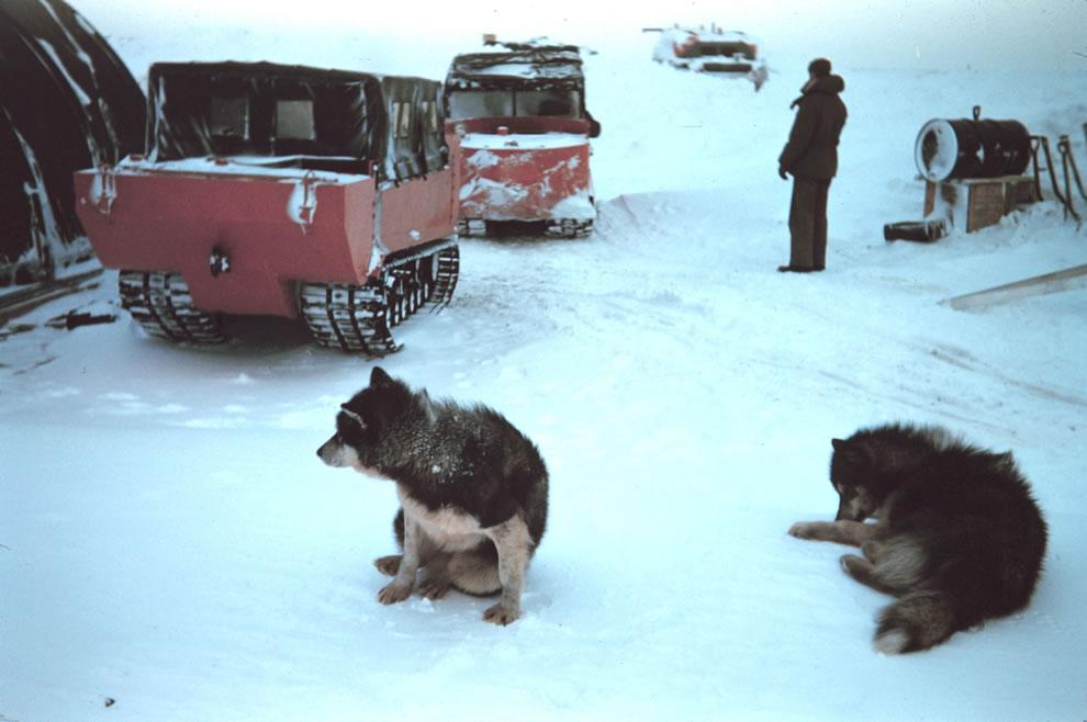 4. Арктическая экспедиция 1949 года. Передвижение производится на специальных вездеходах. В условиях низких температур для техники используется зимнее дизельное топливо.