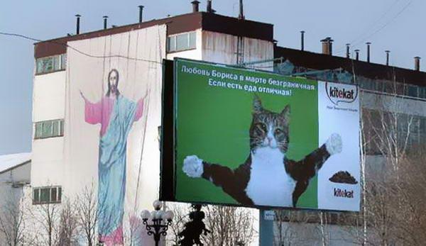 8. Кот Борис из рекламы Kitiket и билборд с изображением Иисуса Христа.