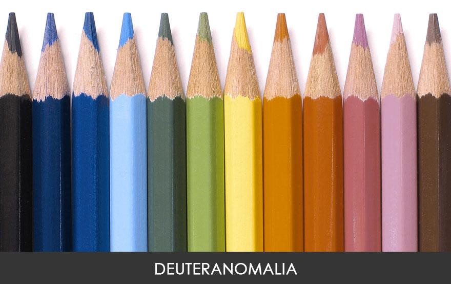 2. Дейтеранопия – наиболее распространенный тип цветовой слепоты. Около 4,63% мужчин и 0,36% женщин испытывают этот тип цветовой слепоты, иногда даже не подозревая об этом. Люди с дейтеранопией видят цвета более приглушенными, особенно когда дело доходит до зеленого и красного.