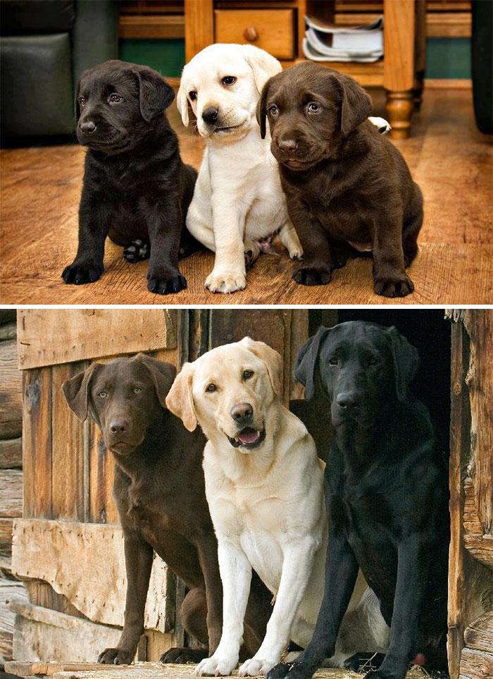2. Друзья навсегда.