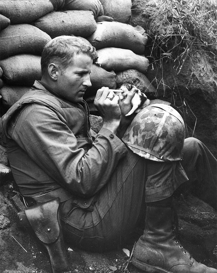 3. Морской пехотинец кормит осиротевшего котенка, мать которого погибла.
