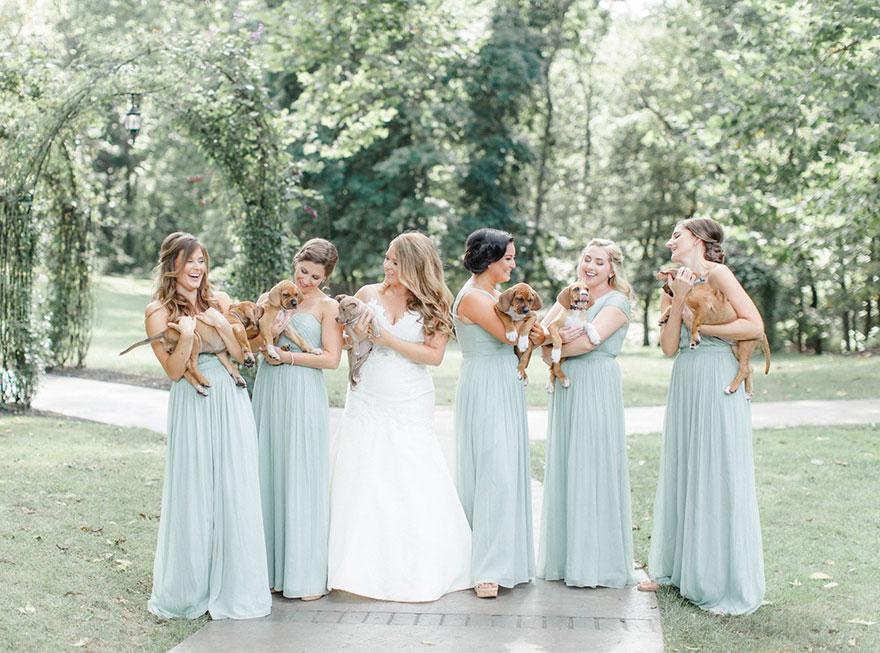 2. Когда Сара Маллок Крейн начала планировать свою свадьбу, она хотела как-то отразить в церемонии их с избранником любовь к животным.