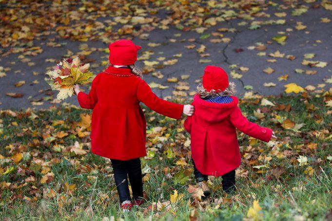 Золотые листья: осень украшает Россию множеством цветов