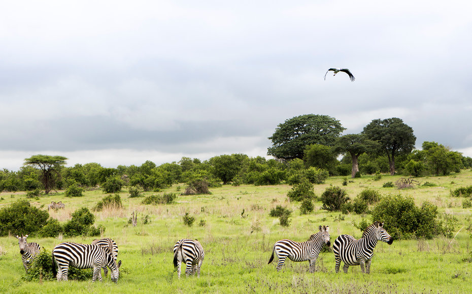 11. Танзания.