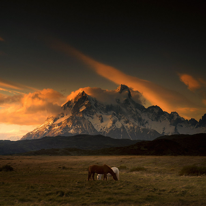1. Регион Патагония расположен в самой южной части Южной Америки, хотя абсолютно точного определения не существует.
