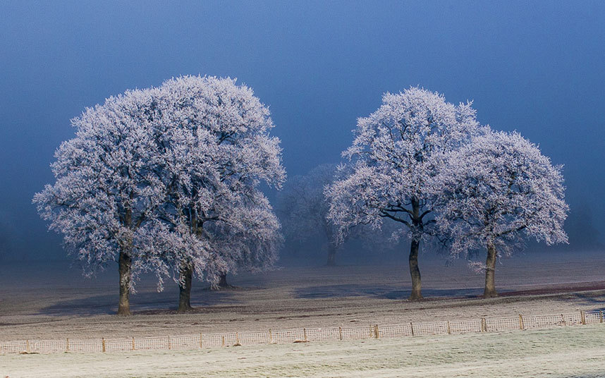 14. Уэльс. Покрытые инеем деревья и в Хей-он-Уай.