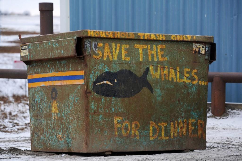 23. Рисунки и надписи украшают все контейнеры в Барроу.