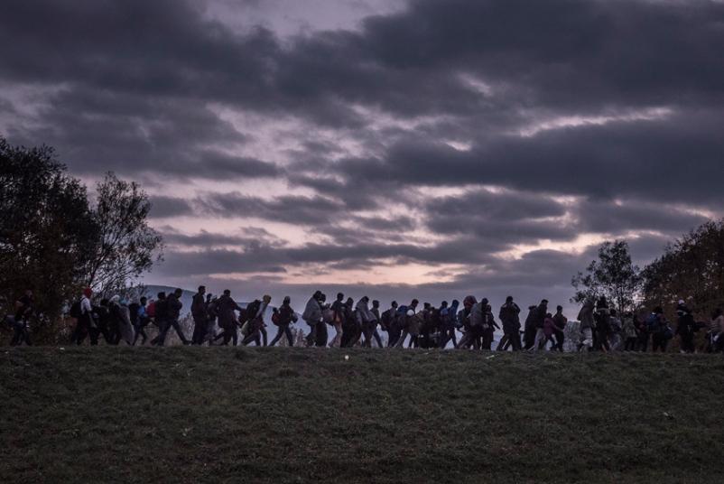 11. Категория «Общие новости». Мигранты, идущие вдоль дамбы в Словении. Фото: Сергей Пономарев.