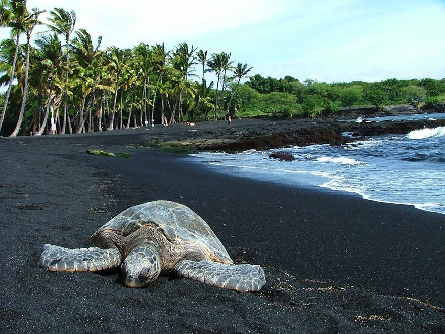 11. Черный пляж Пуналу, Гавайские острова.