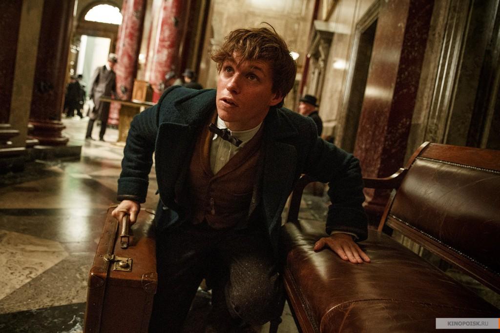 8. Фантастические твари и где они обитают. Приключение писателя Ньюта Скамандера в секретном обществе волшебниц и волшебников, за 70 лет до того, как Гарри Поттер прочитает книгу этого писателя в школе.